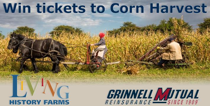 2014-Corn-Harvest