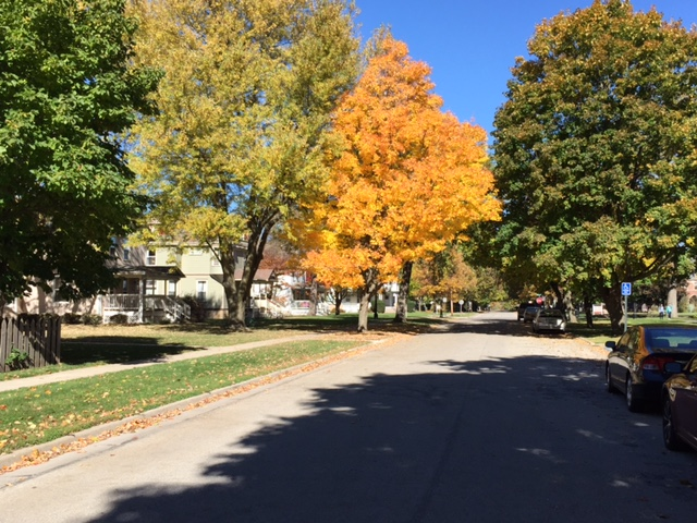 Park street across from the Grinnell College campus.