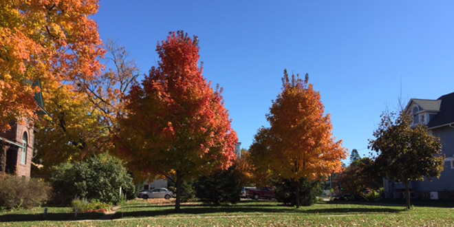A Picture Series of Fall Beauty in Grinnell