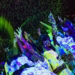 UV Splash 2_660