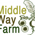 middle_way_740